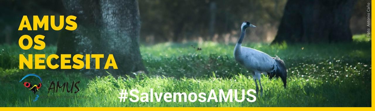 #SalvemosAMUS