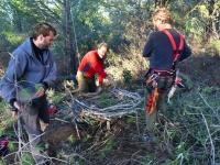 Alfonso Godino, Jaime y Pini, montando la plataforma del primer nido de buitre negro en Valencia del Mombuey y Oliva de la Frontera