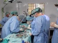 Equipo veterinario del proyecto en proceso quirúrgico a este ejemplar de quebrantahuesos