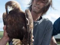 Robe, de Extremoduro, Padrino del Año 2015, libera un águila real (Aquila Chrysaetos) recuperada en AMUS.