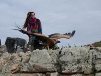 27-01-2020 María libera a este buitre recuperado en el hospital de AMUS
