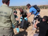 Efectivos del Seprona de la Guardia civil y de los agentes del Medio natural de la Junta de Extremadura efectuando el protocolo para el levantamiento del cadáver de un Águila real electrocutada.