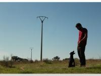Uno de los adiestradores de AMUS interaccionando con Musa en uno de los recorridos.