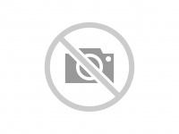 Alfonso Godino, técnico de AMUS en la presentación del proyecto de Conservación del buitre negro en el sur de Badajoz