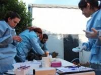 Chequeo e identificación de varios ejemplares de buitre leonado, los ccuales partirán en breve a Cerdeña. Noviembre de 2016